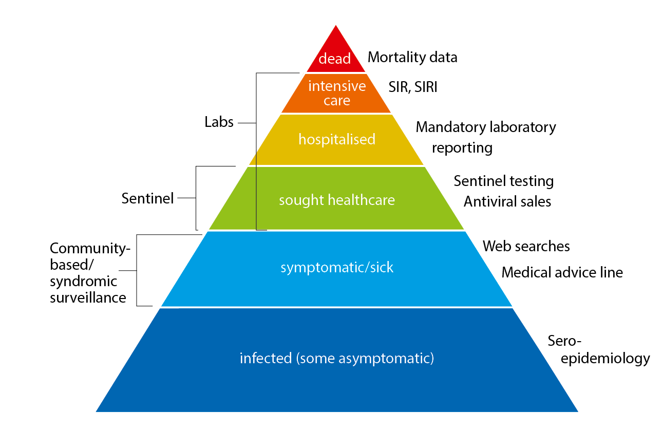 The influenza pyramid showing possible outcomes of an influenza infection and the surveillance systems at each level. The picture is actually a triangle, with a large base of infected people leading up to a small peak of those who die of influenza. Other portions of the pyramid (going up) are symptomatic or sick, sought healthcare, hospitalised, intensive care and finally, dead.